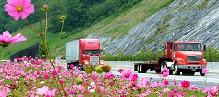 Image of highway with trucks, moutains & flowers